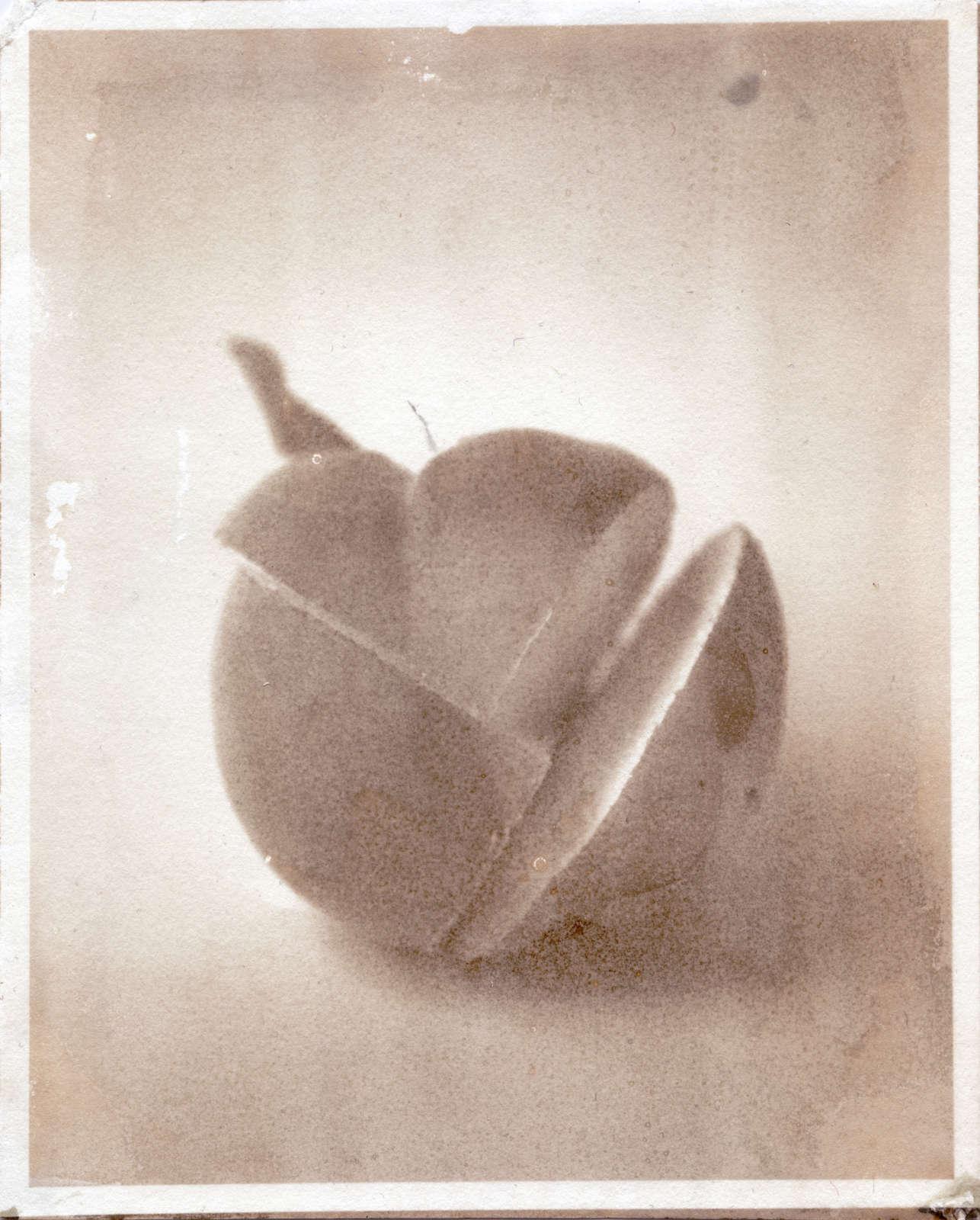 Matthew Brandt, Peaches, 11B, 2017