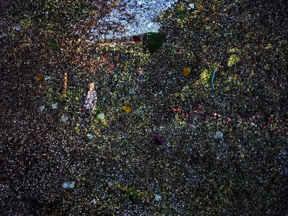 Tent-Camera Image on Ground: View of Monet's Gardens with Gardener, Giverny, France , 2015