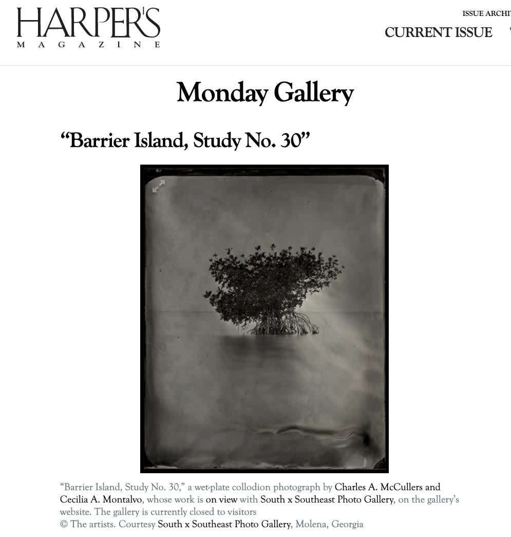"""Monday Gallery, """"Barrier Island, Study No. 30"""""""