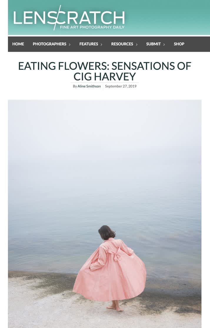 Eating Flowers: Sensations of Cig Harvey