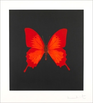 Damien - Hirst, The Souls on Jacob's Ladder Take Their Flight (Large Red Butterfly), 2007