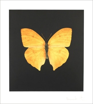 Damien - Hirst, The Souls on Jacob's Ladder Take Their Flight (Large Yellow Butterfly), 2007