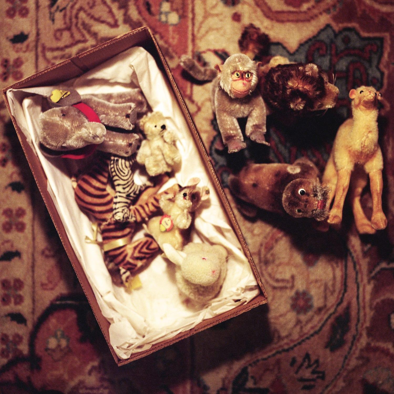 Aline Smithson, Steiff Animals and Box, 2012