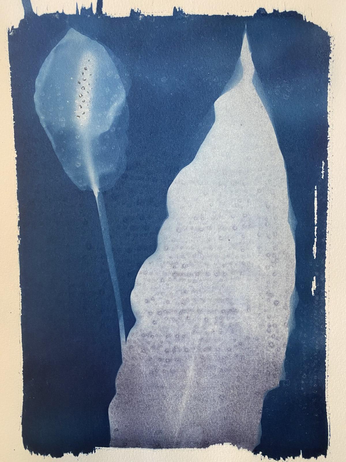 Keris Salmon, Peace Lily, 2020
