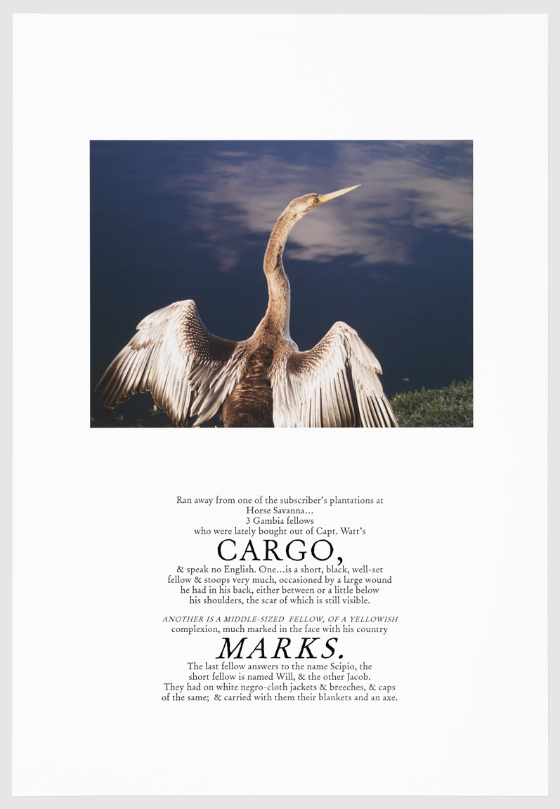 Keris Salmon, CARGO, 2016