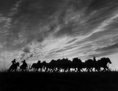 Gordon Parks, Count of Cabral's Wild Horses, Estoril, Portugal, 1951