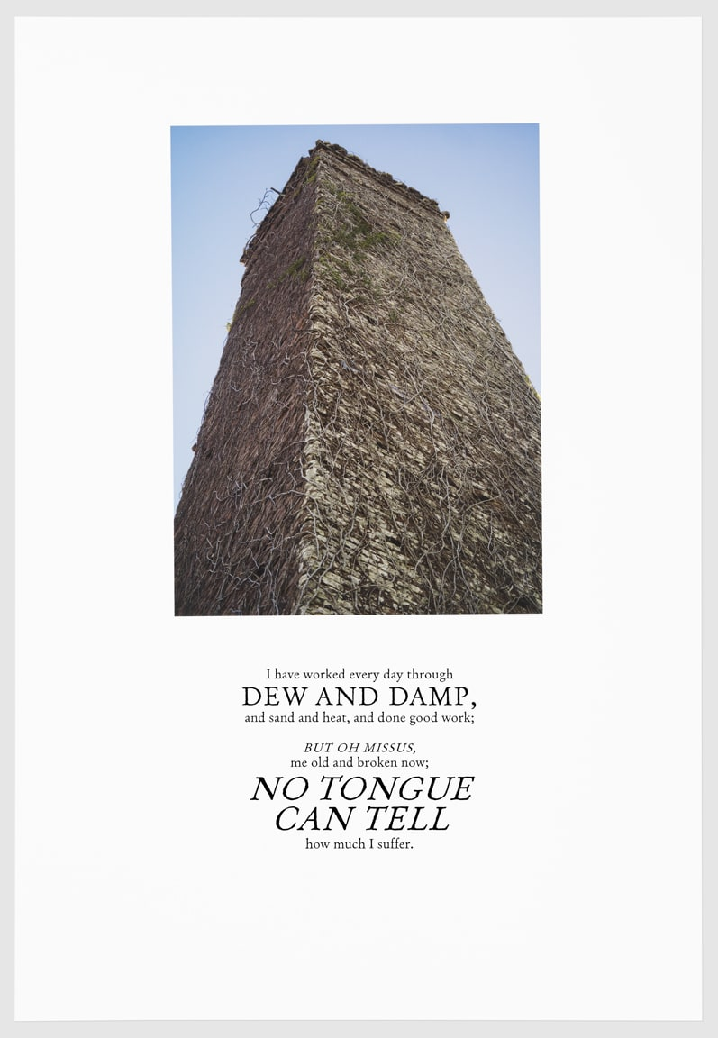 Keris Salmon, DEW AND DAMP, 2016