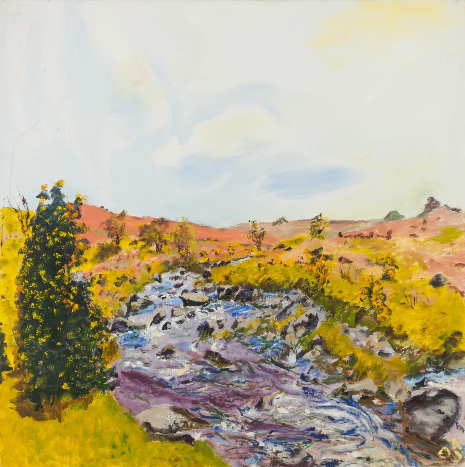 JEAN JONES, Untitled (The River Plym), 2004