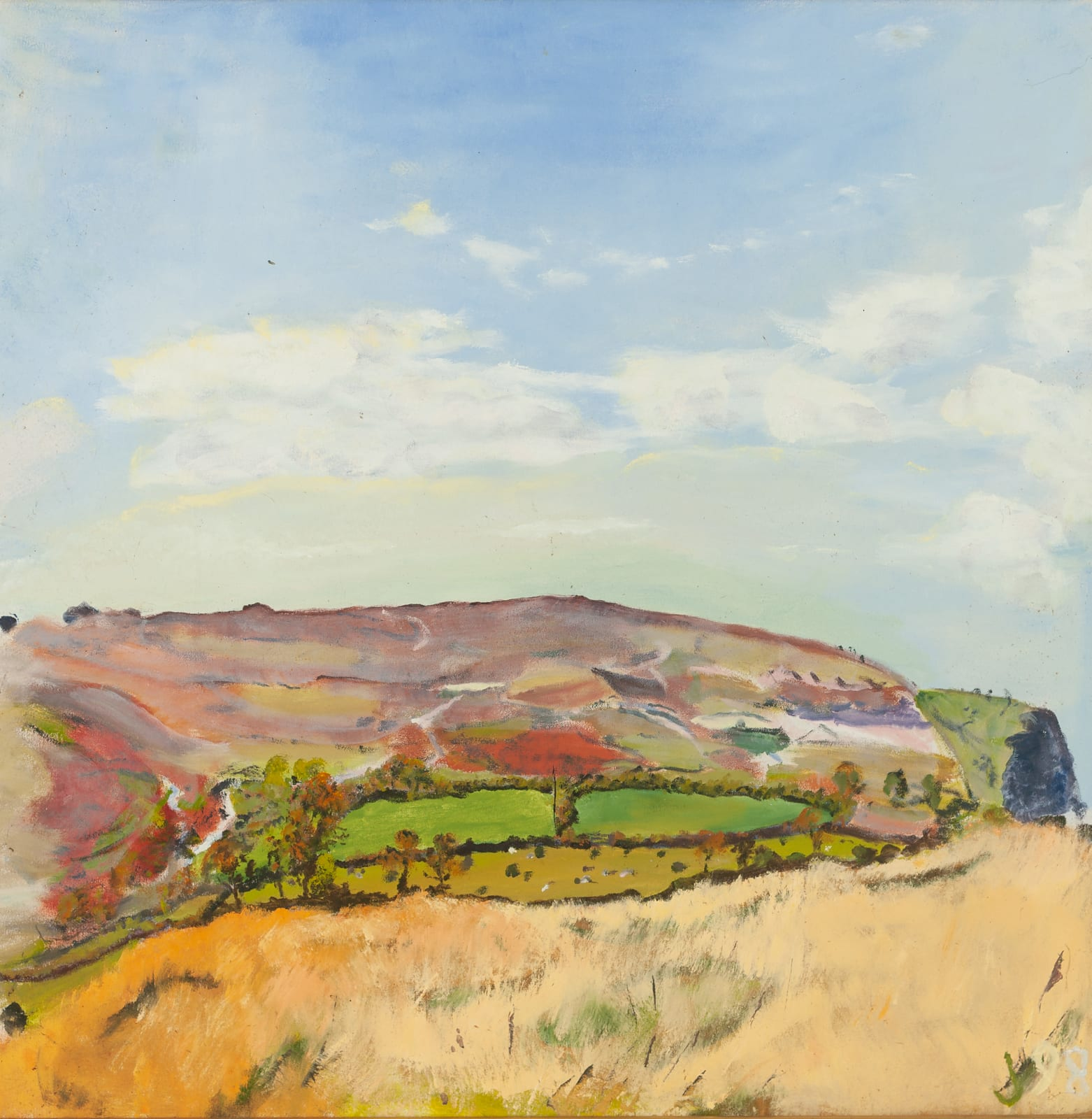 JEAN JONES, Untitled : View from Yellands, 1998