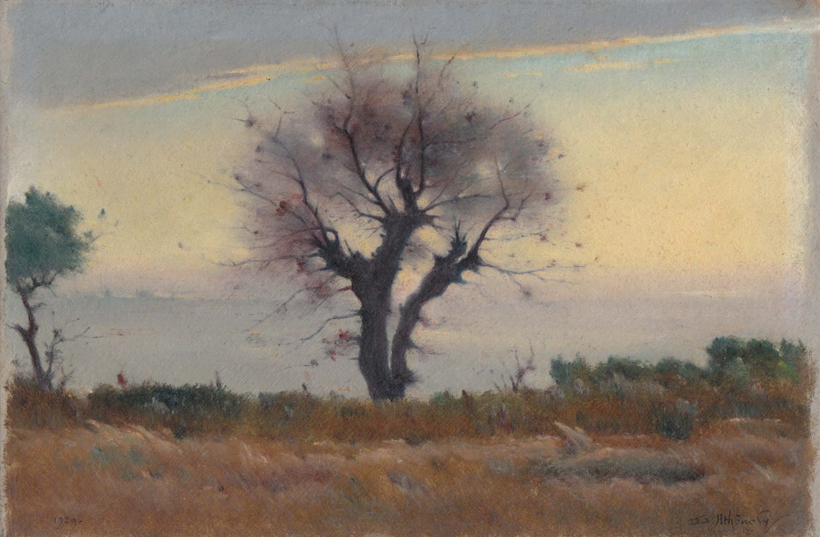 EDOUARD ATHÉNOSY, Brown and purple grey tree, 1929