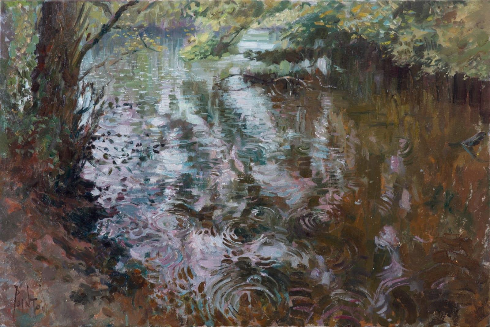 Rob Pointon ROI, Raindrops on the Pond, 04/2020