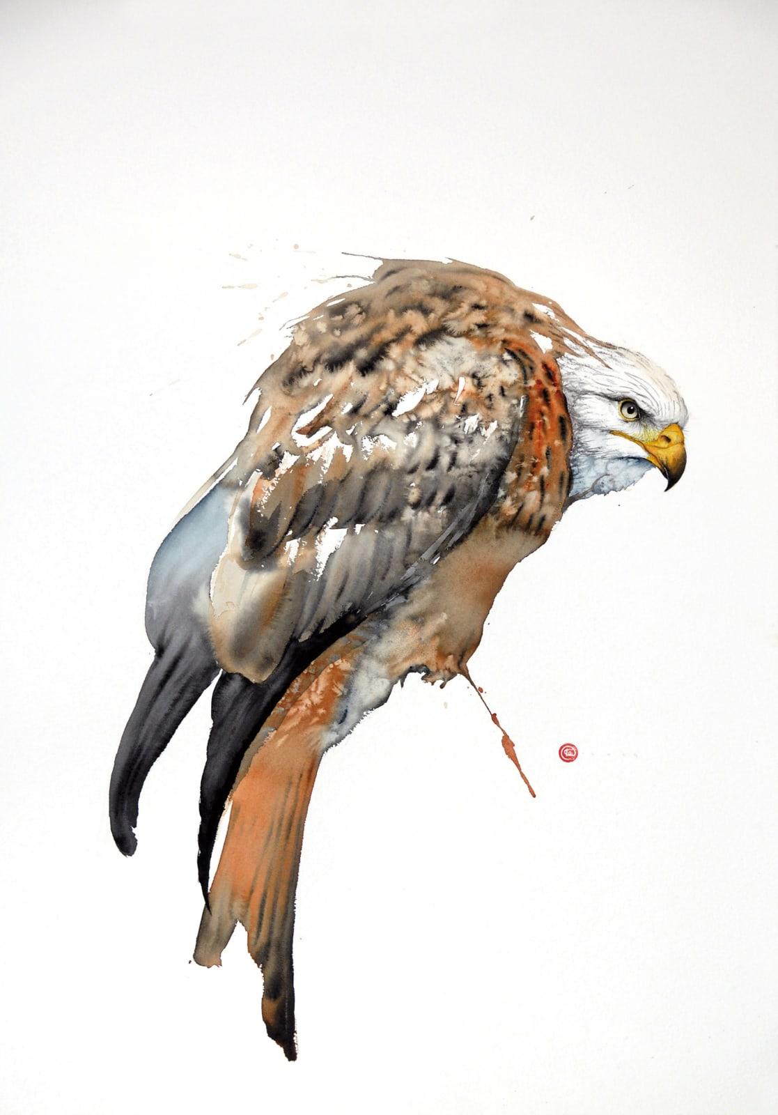 Karl Martens, Red Kite I (Unframed)