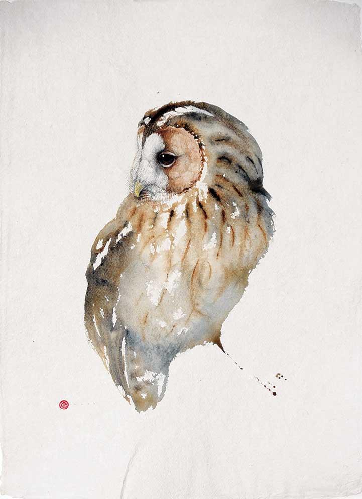 Karl Martens, Tawny Owl