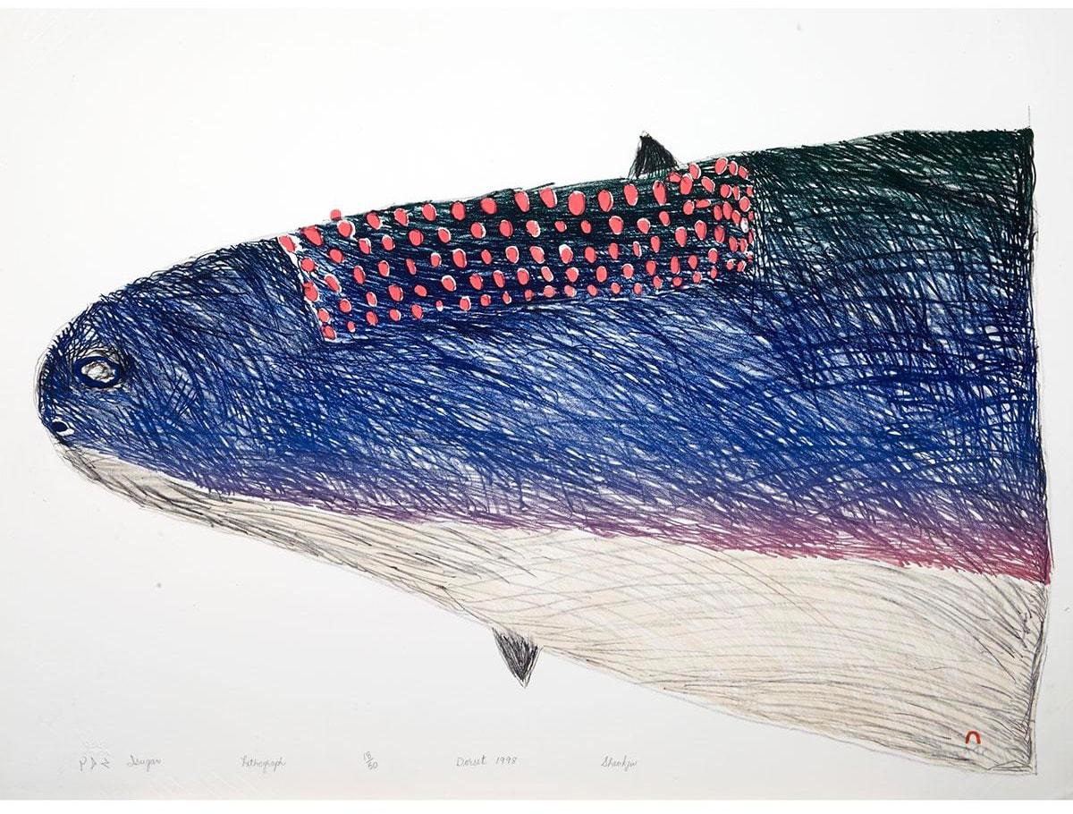 SHEOJUK ETIDLOOIE (1932-1999) KINNGAIT (CAPE DORSET) Printmaker: NIVIAKSIE QUVIANAQTULIAQ (1970-) KINNGAIT (CAPE DORSET) Isugar (Lake Trout), 1998 #21 lithograph, 22.5 x 30 in (57.1 x 76.2 cm) 18/50
