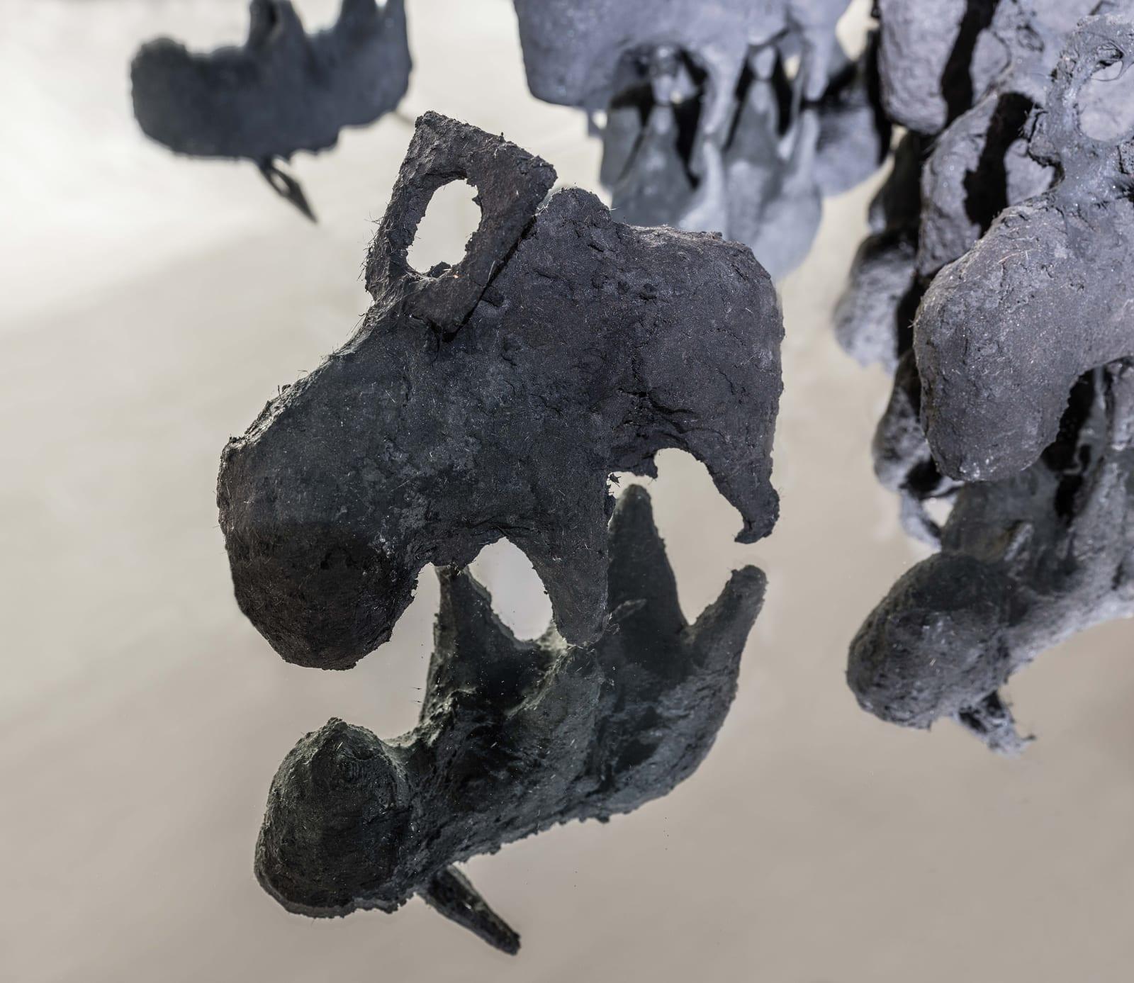 Michael Müller, Feldforschung (New African Kono), 2018