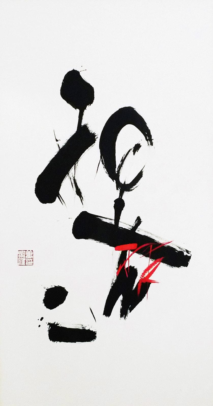 Katherine Xiao 蕭可佳, Choice 選擇, 2009