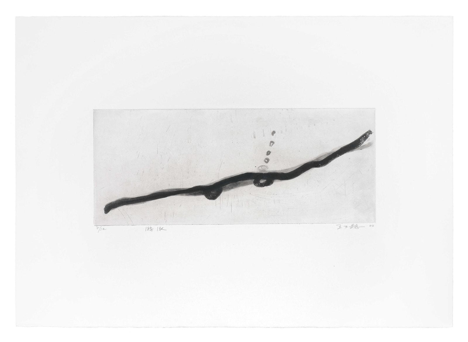 Wang Gongyi 王公懿, Swimming 游泳 (Edition 7 of 12), 2000