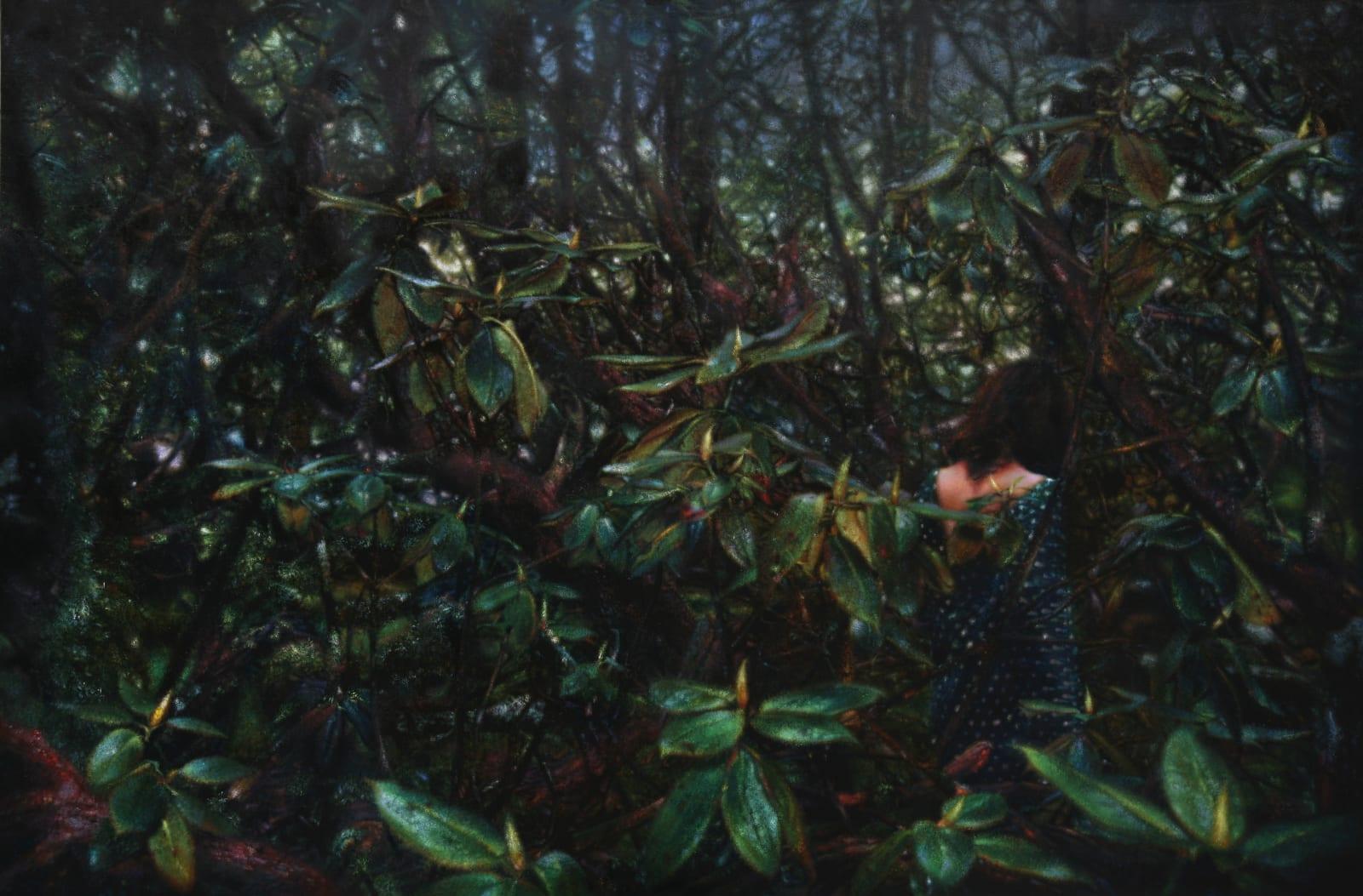 Jiang Chuan 姜川, Spirit of Life 生命中的精靈, 2012