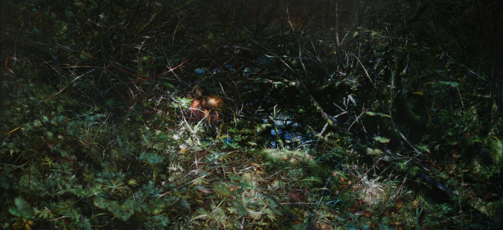 Jiang Chuan 姜川, Tangled 照亮的只有周身的荆棘, 2013