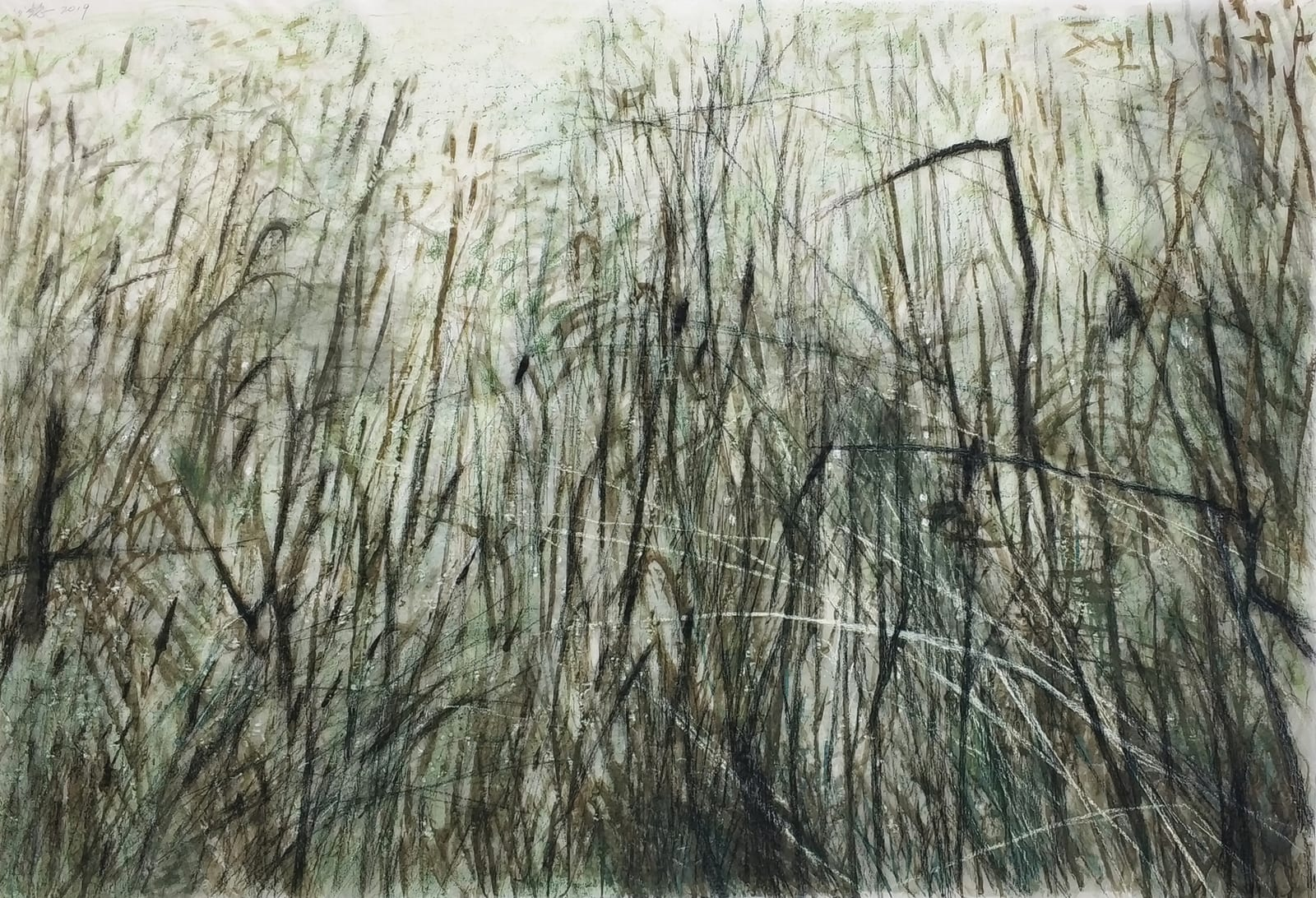 Wang Gongyi 王公懿, Leaves of Grass No.6 草葉集之六, 2019