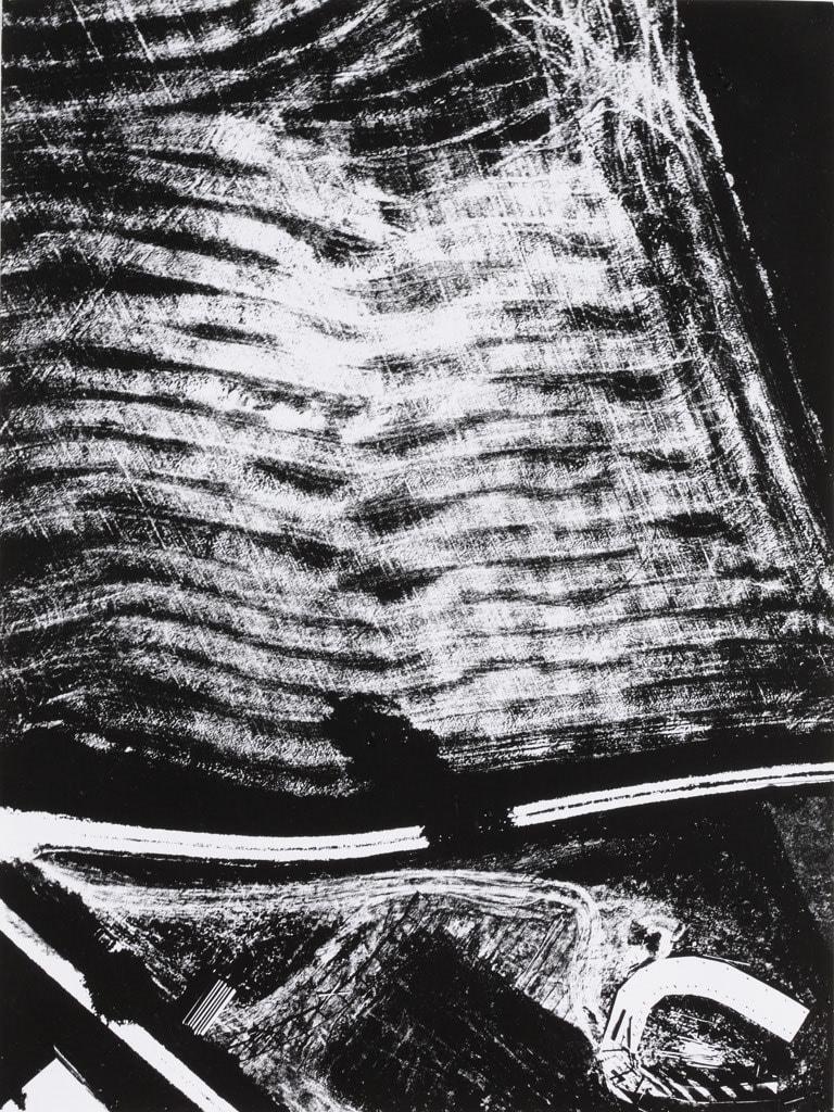 Mario Giacomelli, Presa di coscienza sulla natura, 1954-