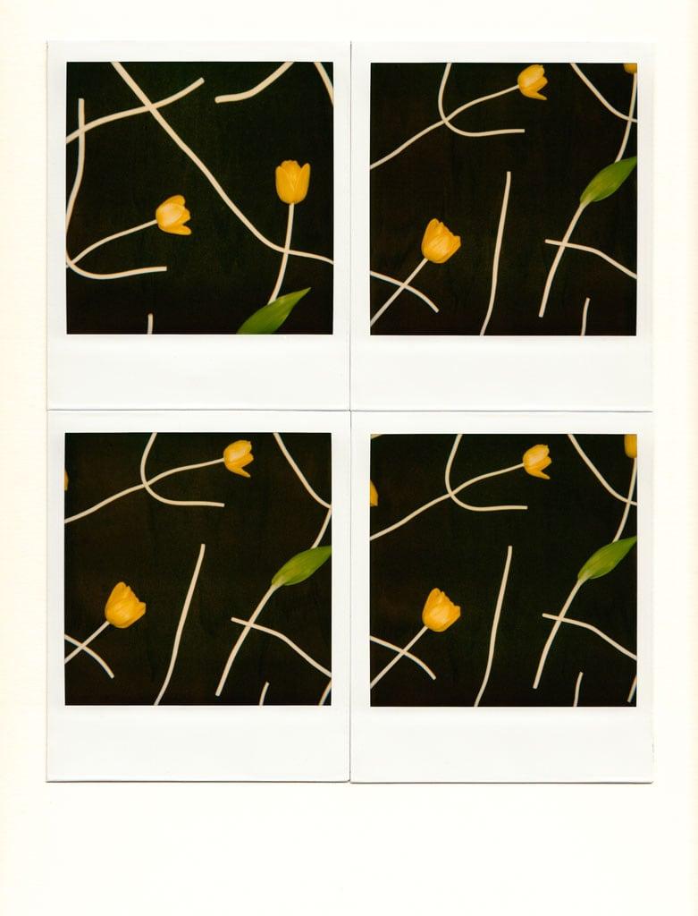 Unglee, deux tulipes jaunes, 1990