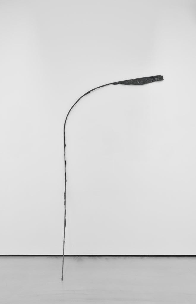 Michelle Lopez, Flag Series (3), 2014