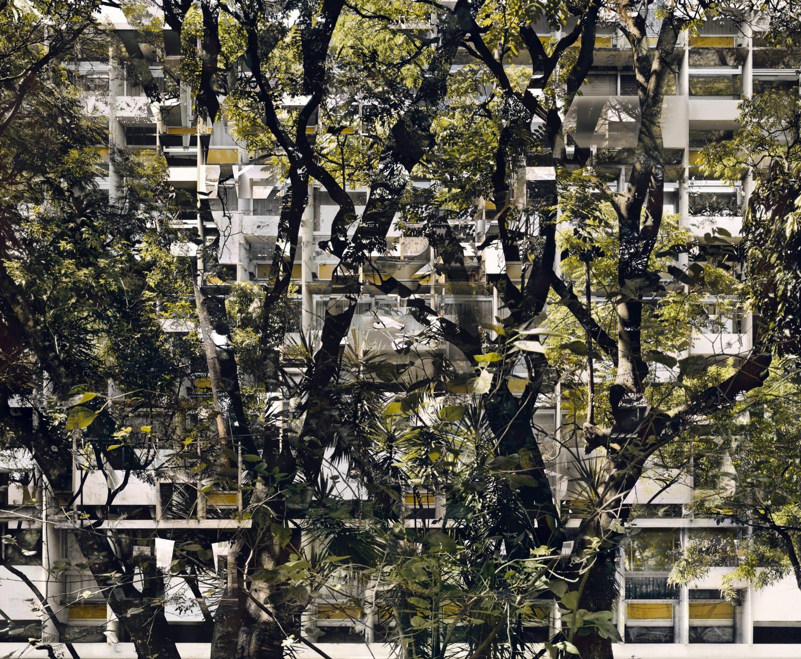 Stéphane Couturier, BRASILIA - Série 'Melting Point' - Quadras 04, 2007-2008
