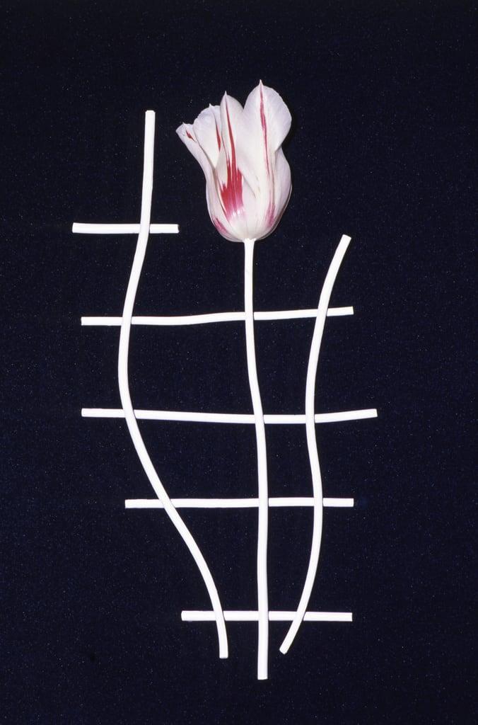 Unglee, Éludienne, 30 avril 1992