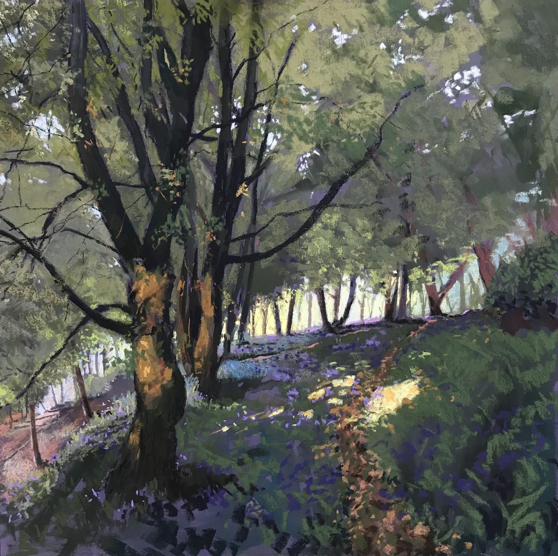 Margaret Evans, Woodland Sunlight