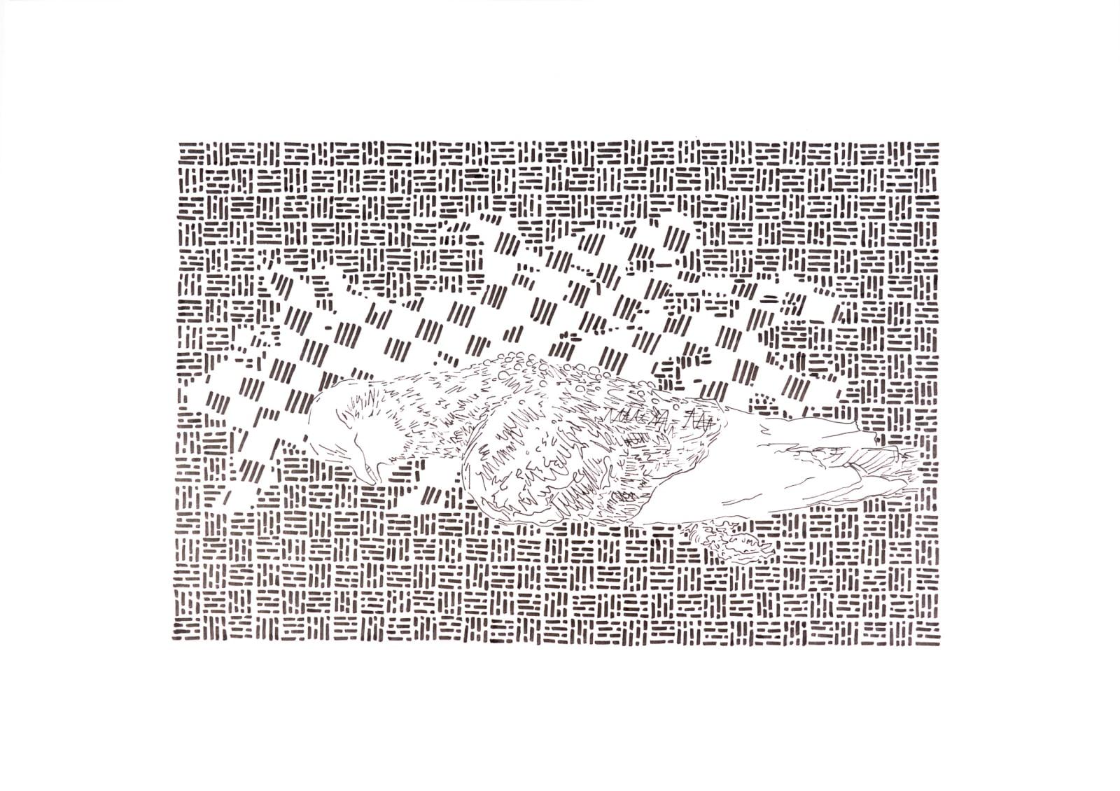 Rowan Dahl, Pigeon 3 (set of 4)