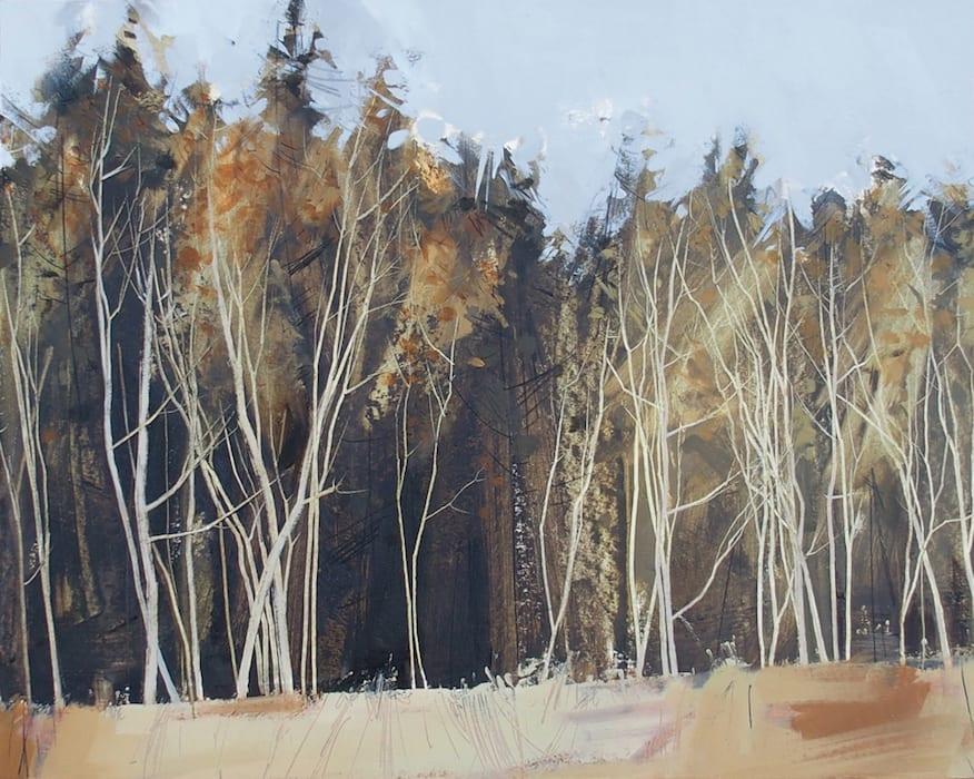 Anna King, Birch Against Spruce