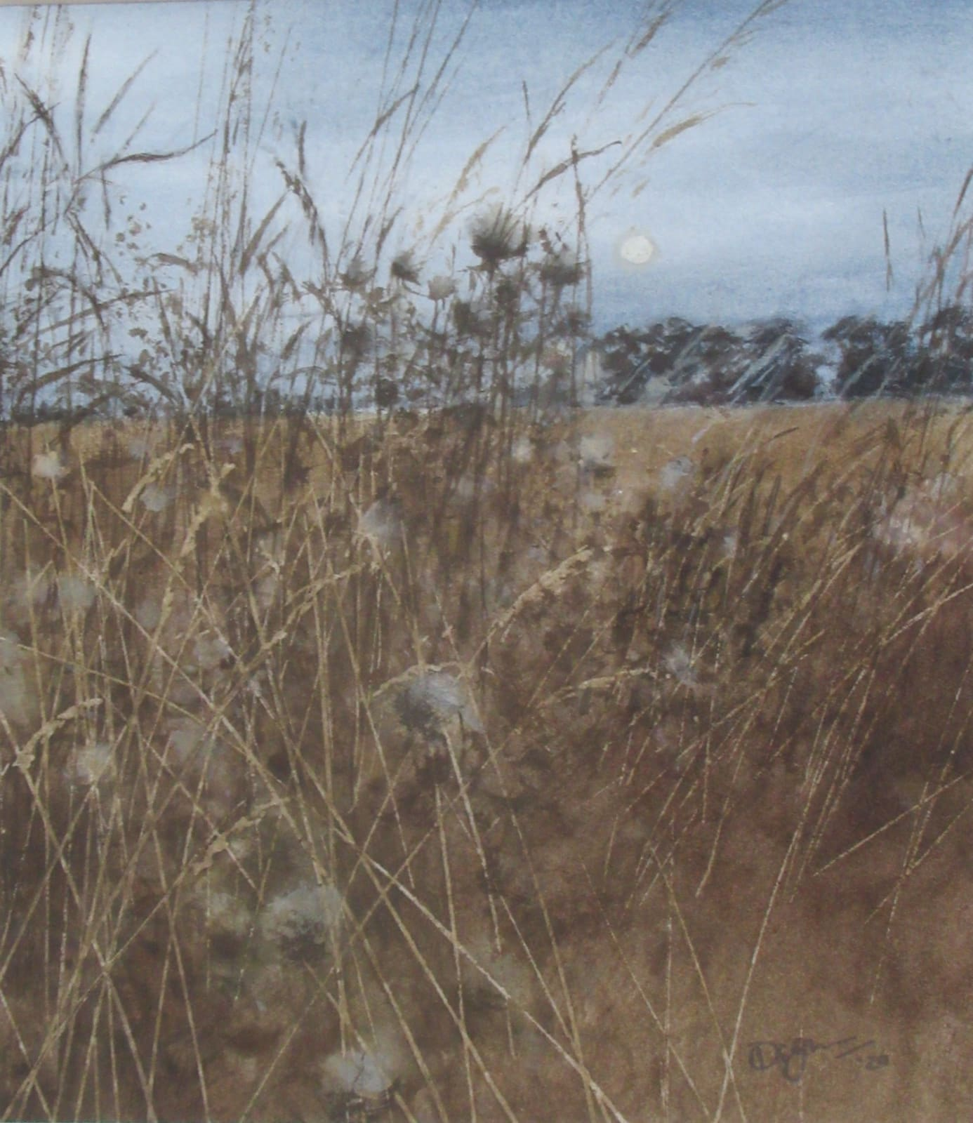 David Johnston RSW, The Autumn Thistledown