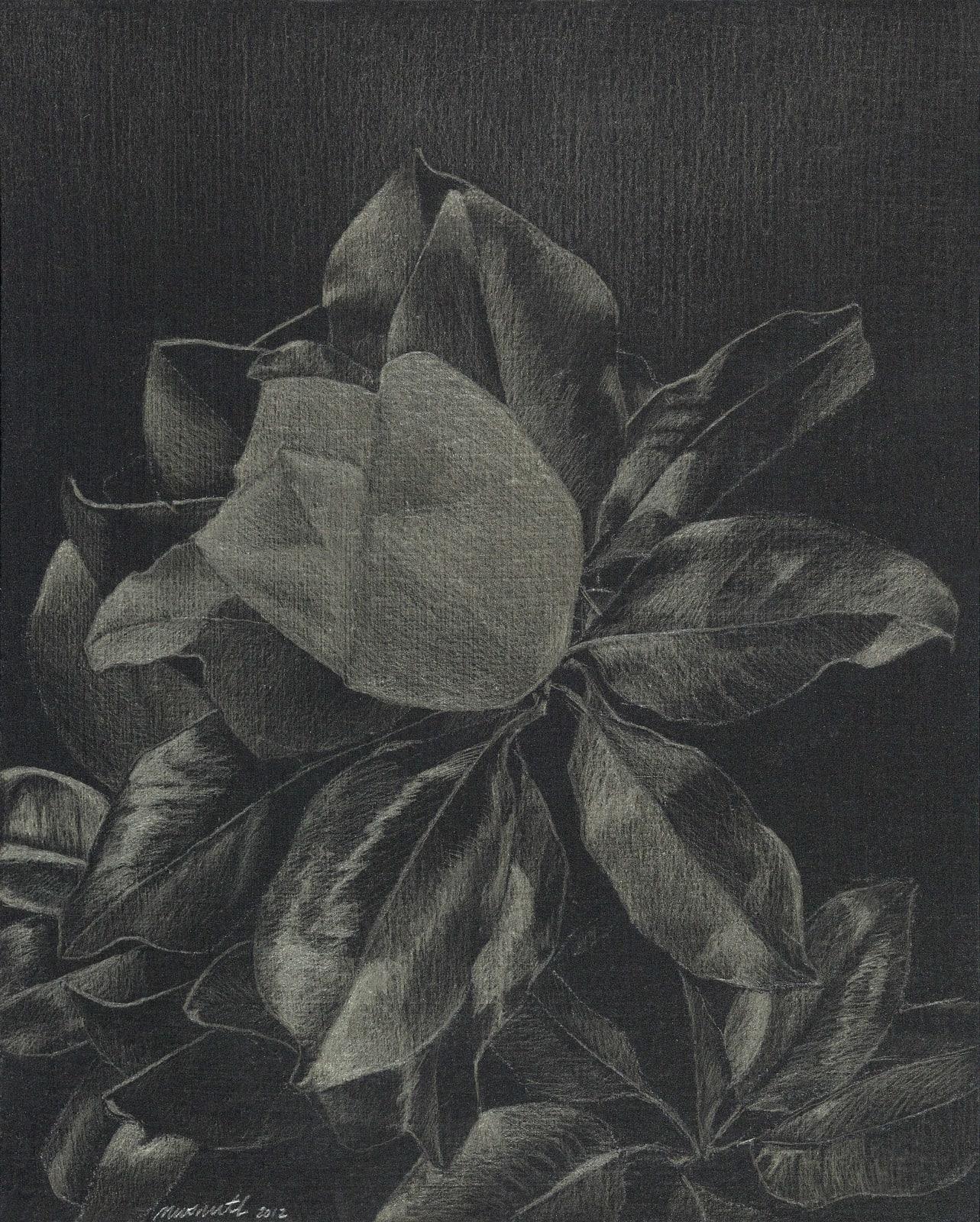 Marjorie Williams-Smith, Magnolia, 2012