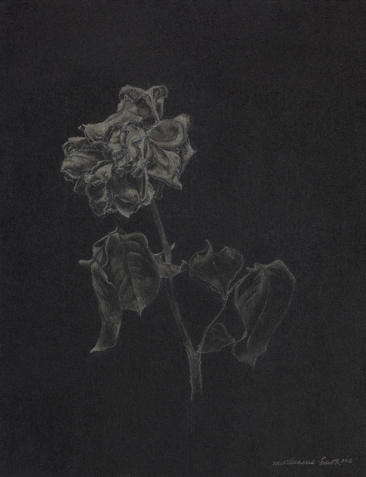 Marjorie Williams-Smith, Glimmer, 2012