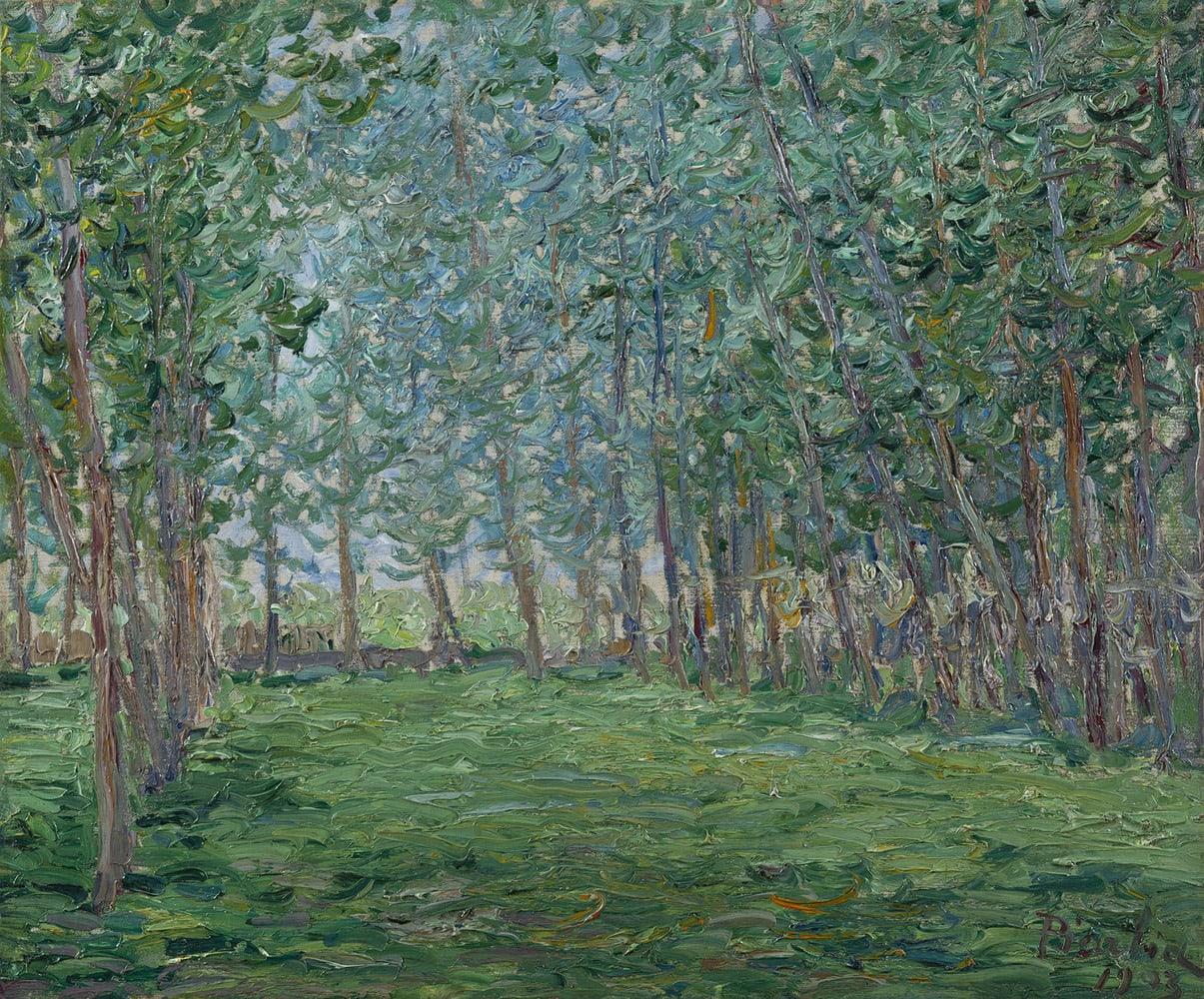 FRANCIS PICABIA, Champ près d'un bois, 1903