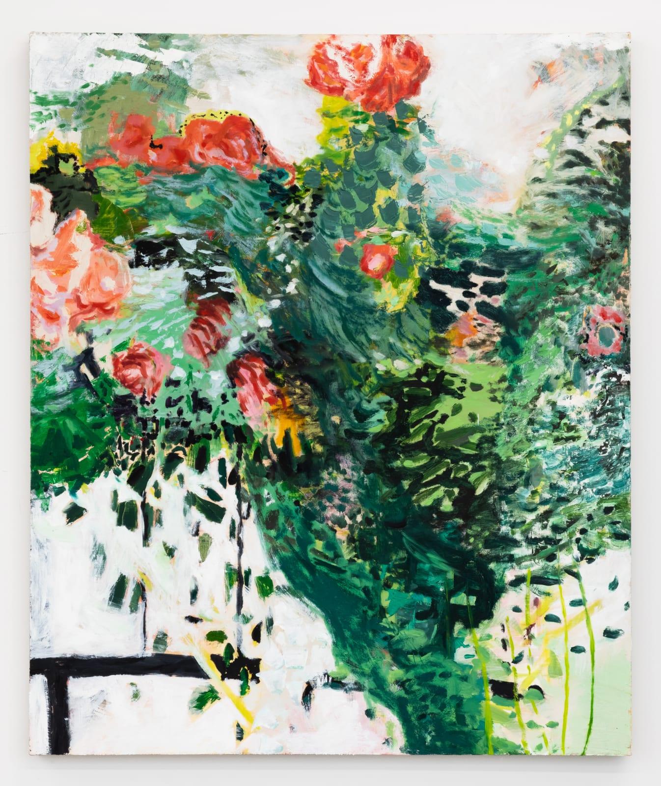 Lumin Wakoa, roses (front garden), 2021