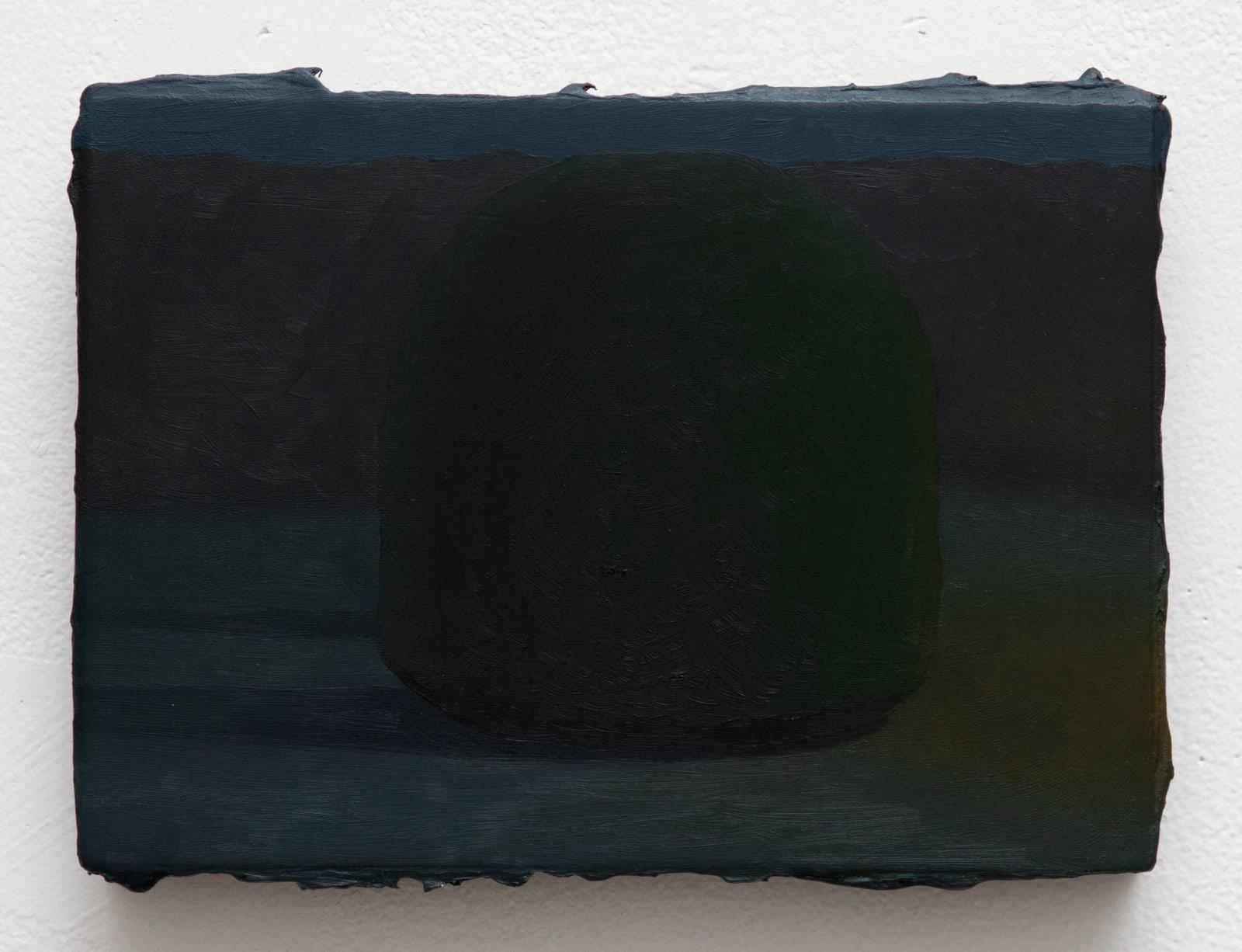 Sarah Schlesinger, Hidden Bush at Night, 2021