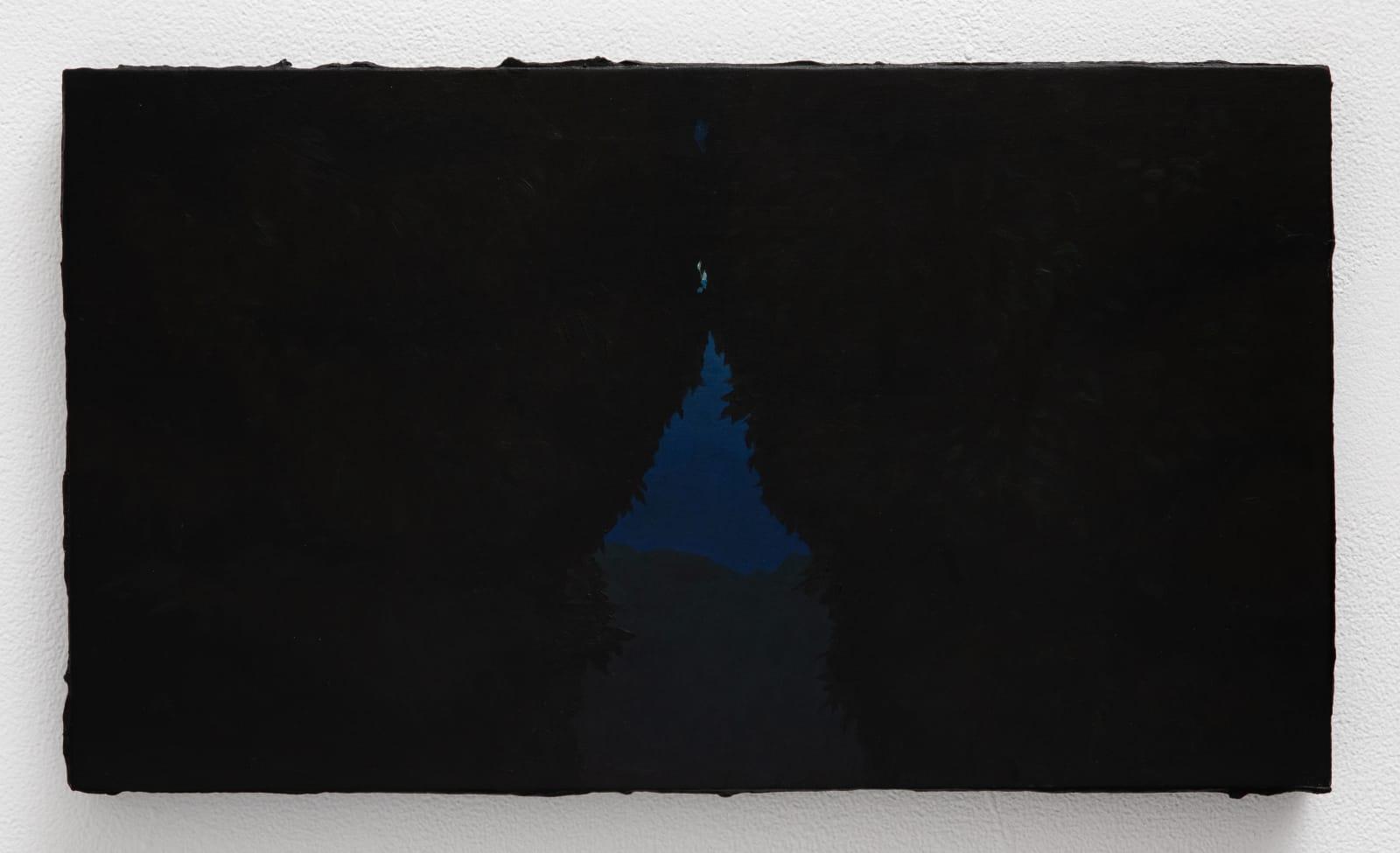 Sarah Schlesinger, The Vista, 2021