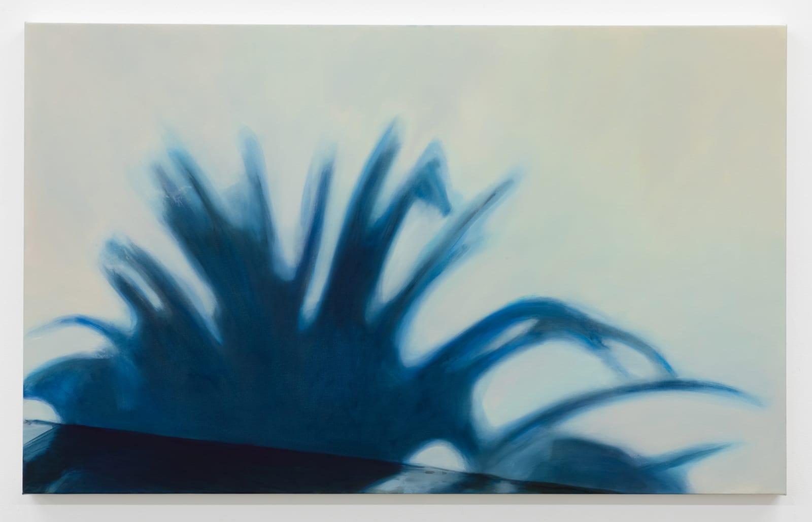 Aglaé Bassens, Palm Shadow, 2021