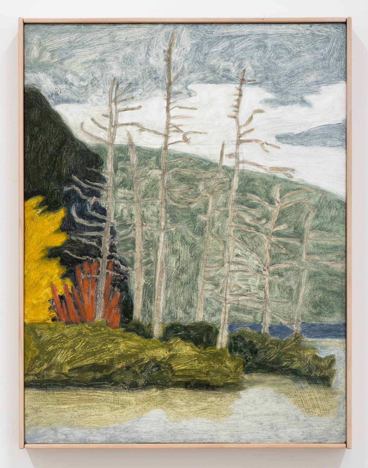 James Morse, Seven Cedars, 2021