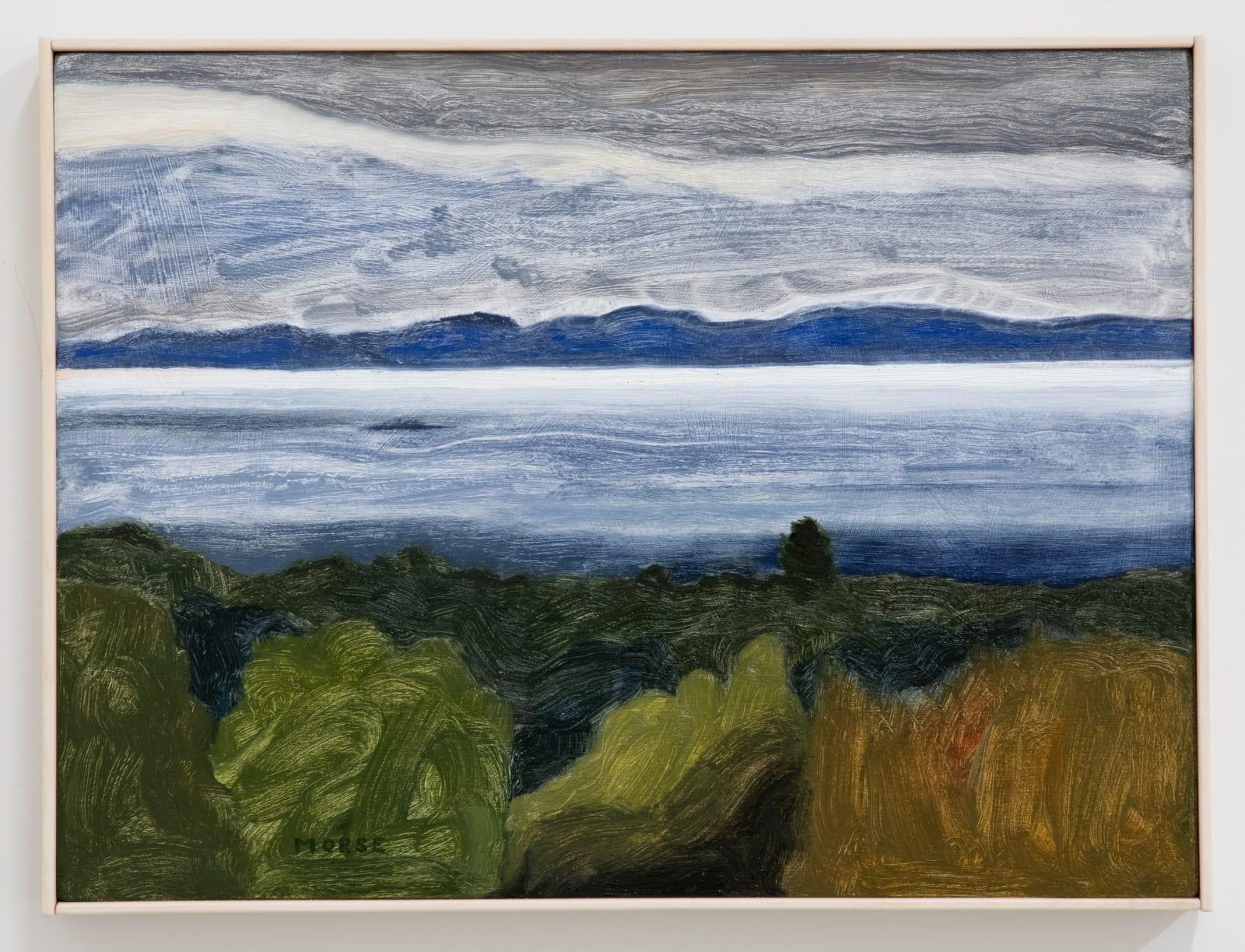 James Morse, Gull Island, 2021