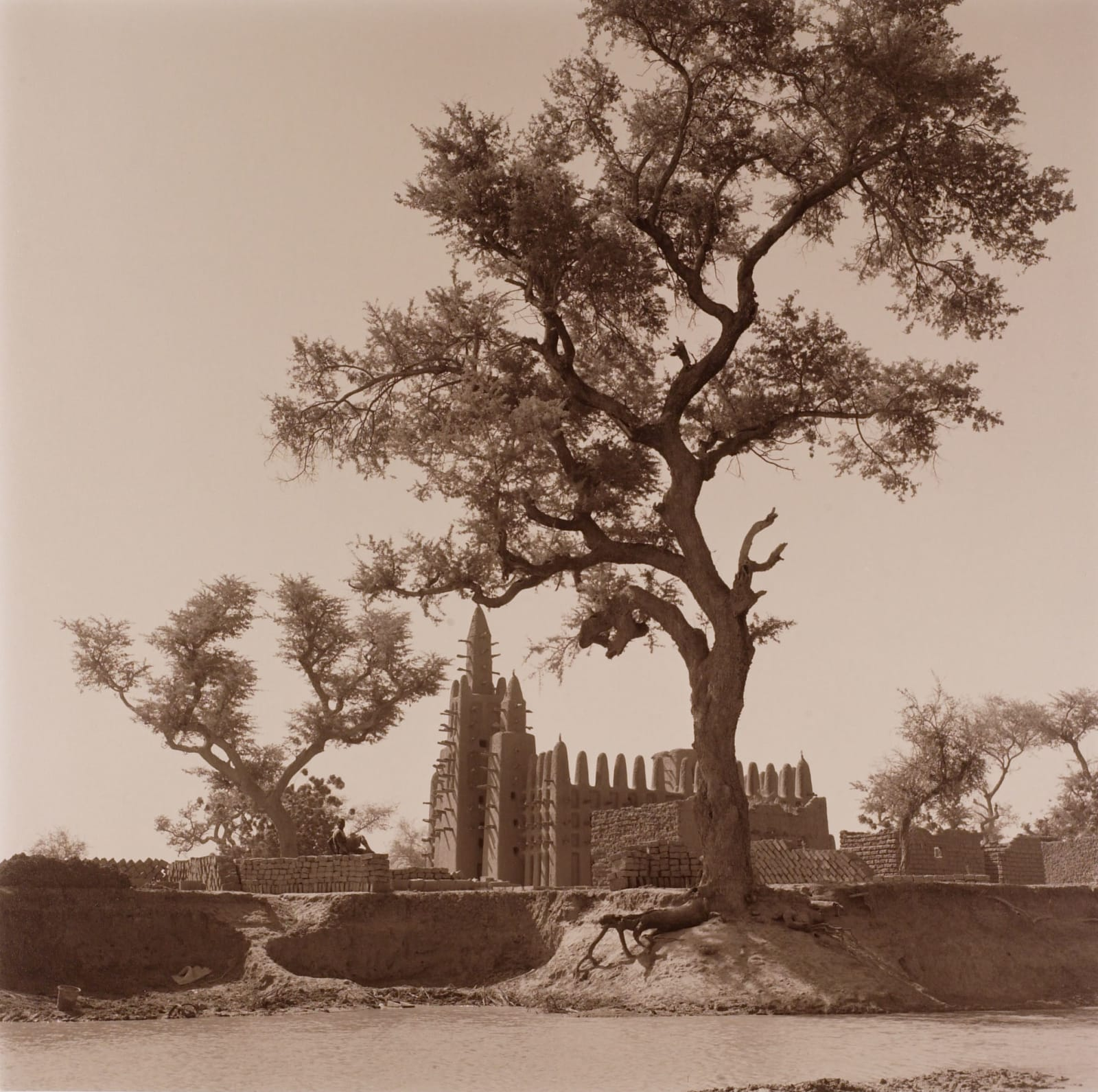 Mosque of Djenne, Mali behind beautiful tree, by Lynn Davis