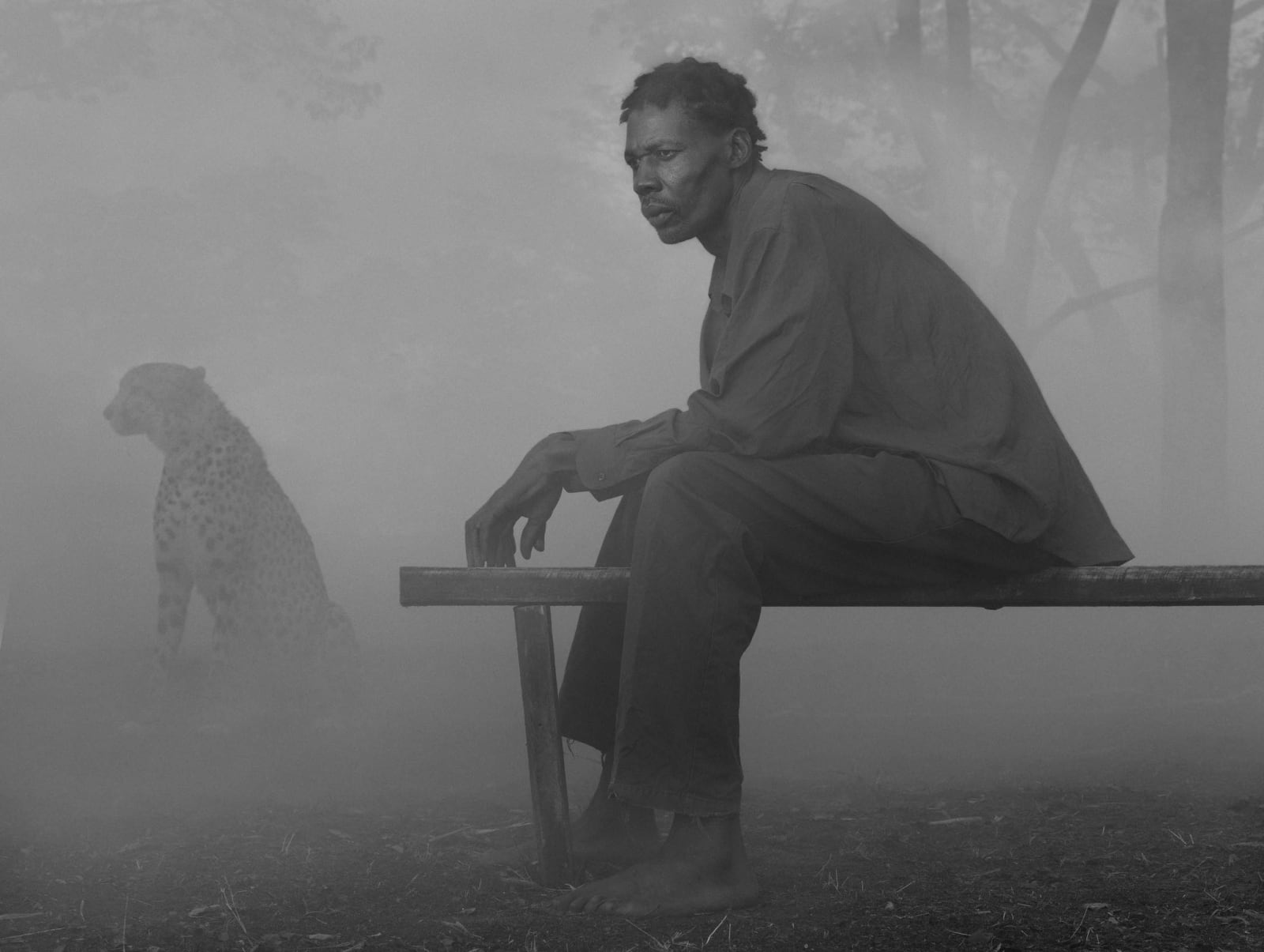 Richard sitting on bench with cheetah named Diesel behind him in fog, Zimbabwe, from the Day May Break series by Nick Brandt