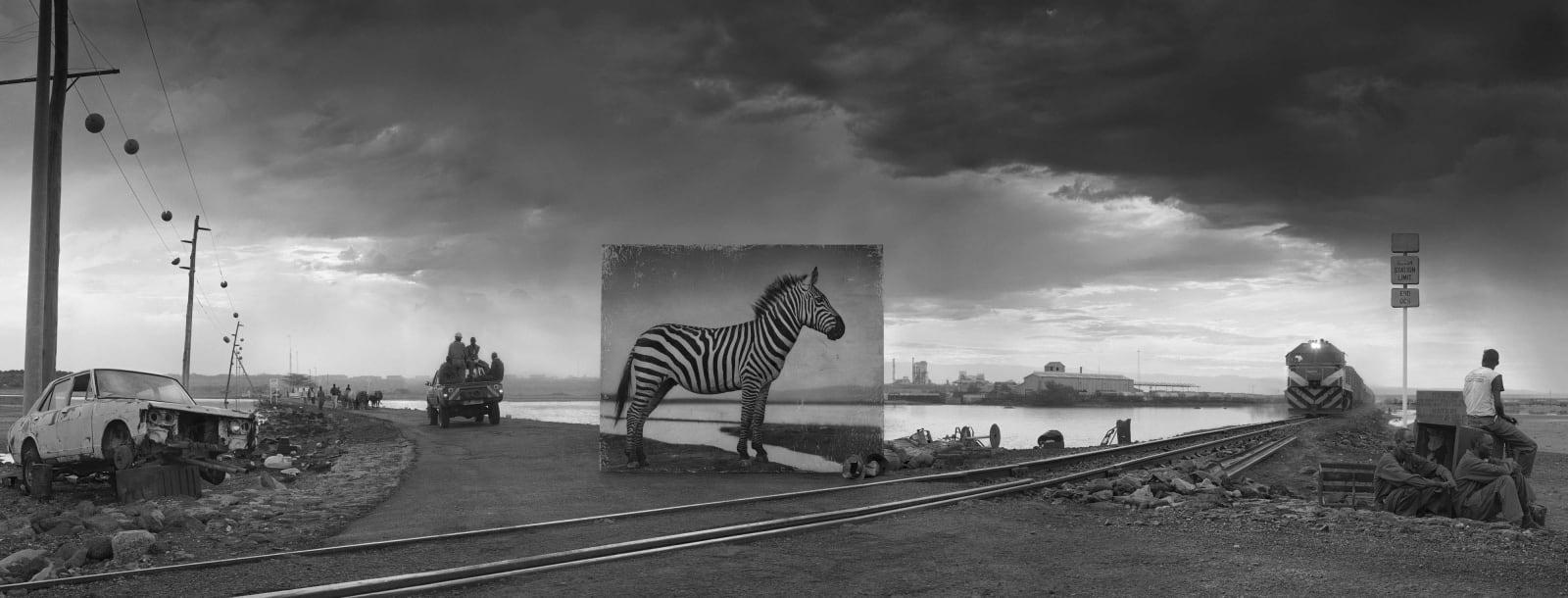 Nick Brandt, Road to Factory with Zebra, 2014
