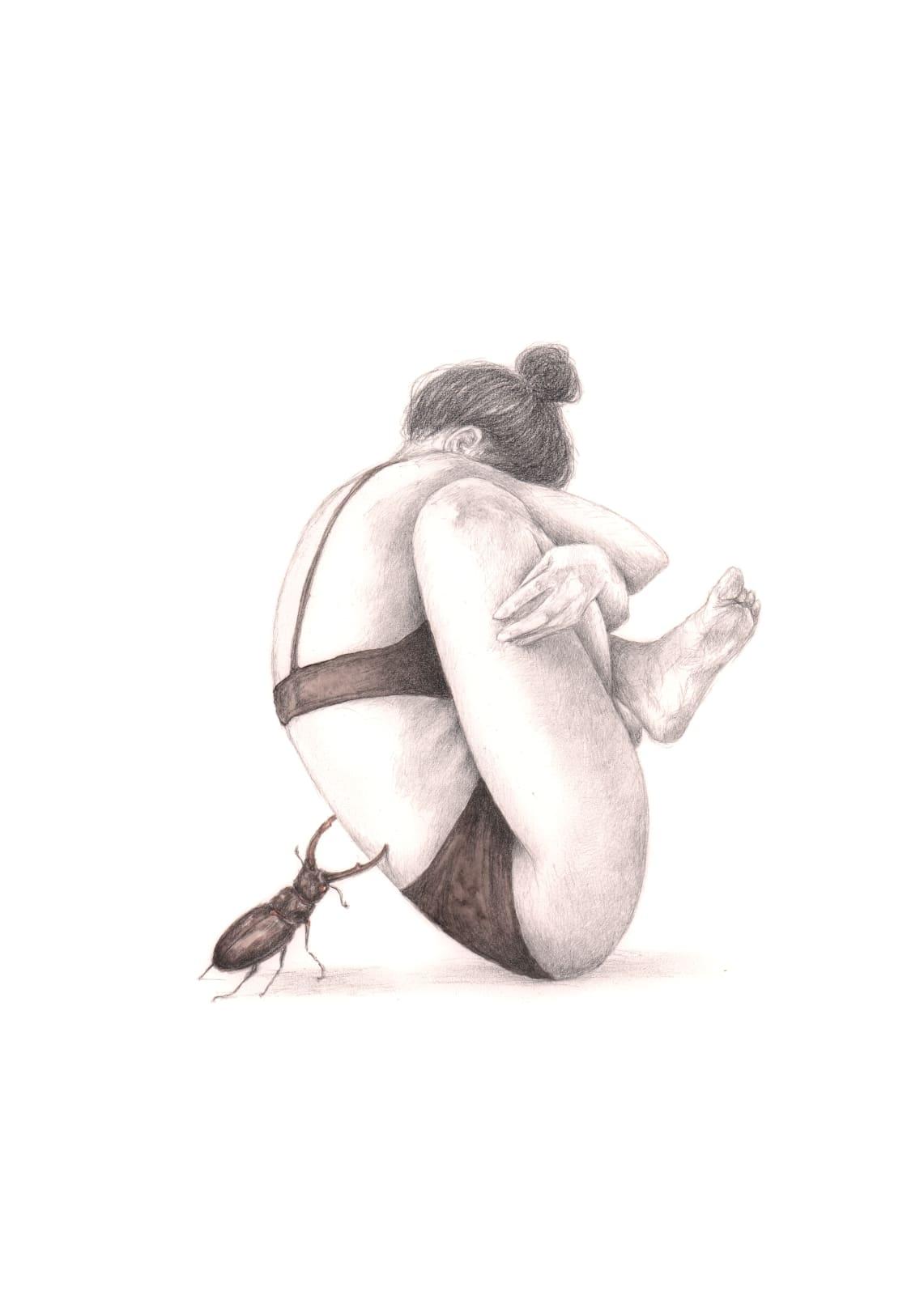 Rachel Goodyear, Stag Beetle, 2020