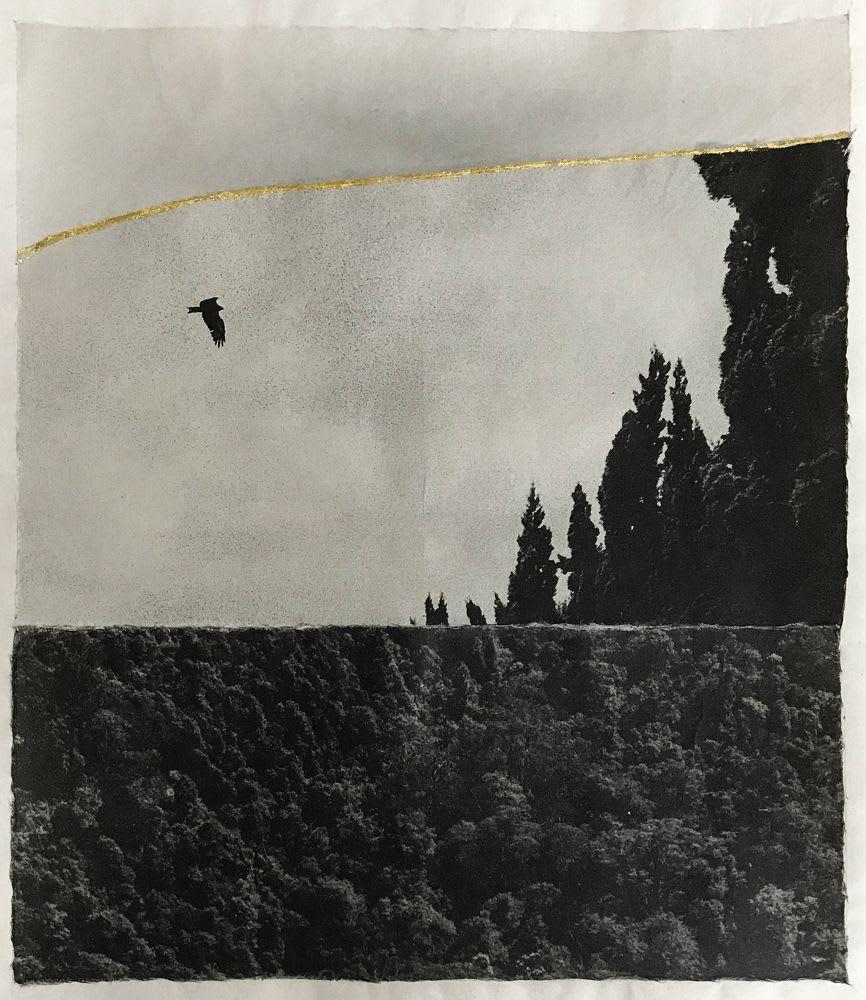 Margaret Lansink, Serene, 2019