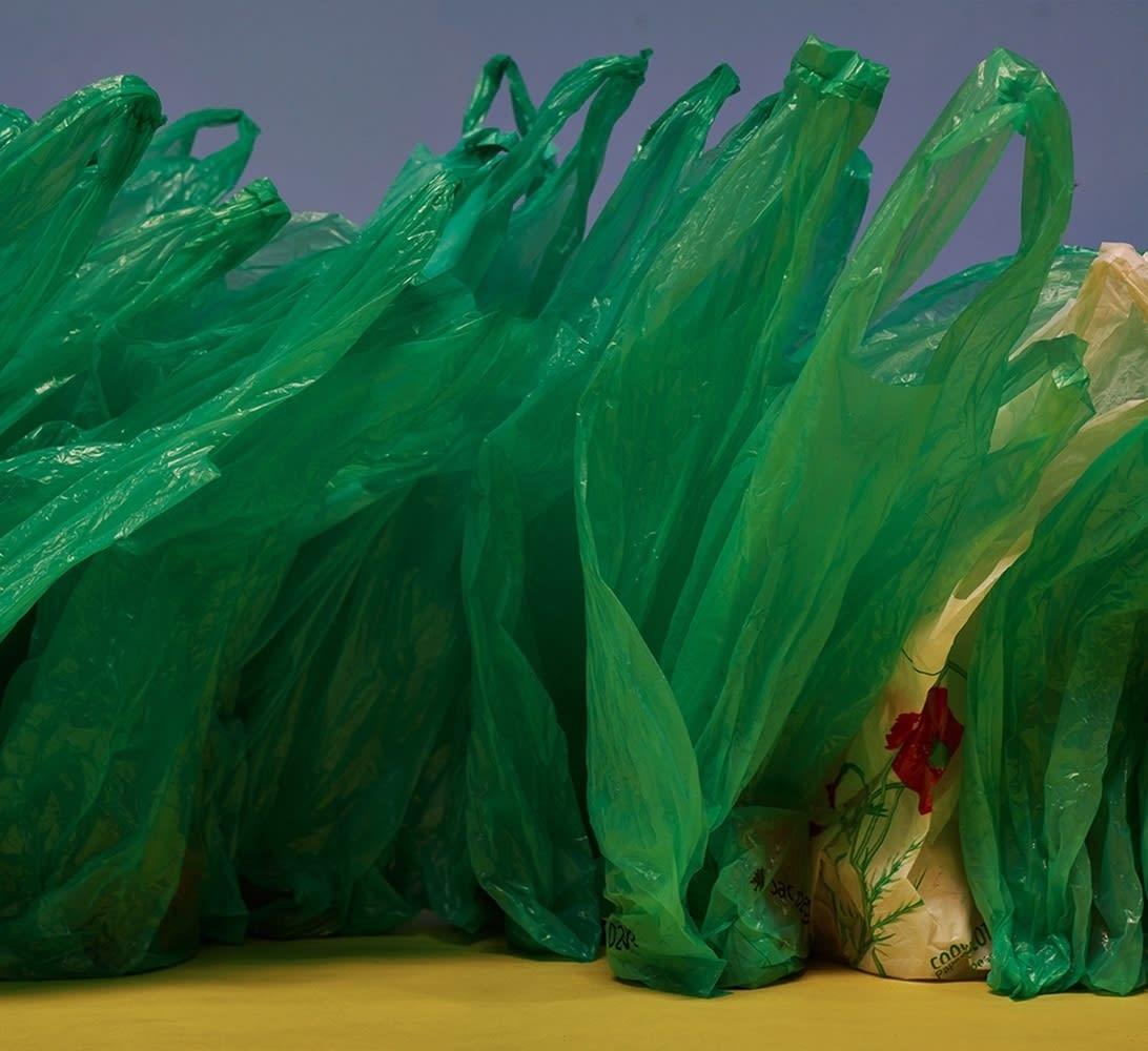 Paul Pouvreau, Variations avec coquelicot, 2015