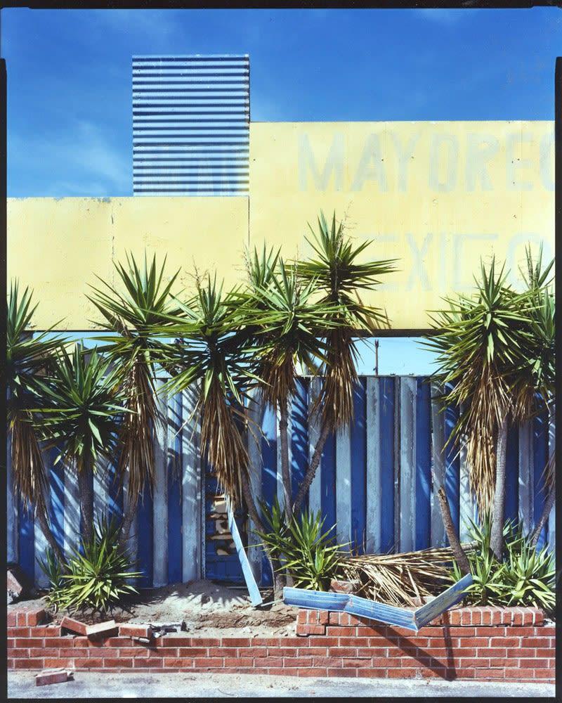 Bruce Wrighton Palm trees in front of building with MAYORE...EXICO... sign Tirage C-print d'époque 20 x 25 cm Dim. papier: 20 x 25 cm