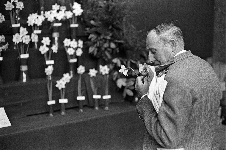 Homer Sykes, Flower Show, Victoria, London, 1969